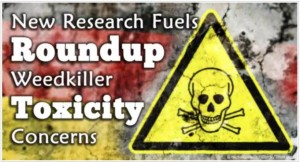 Thanks, Monsanto and FDA! New Study Expresses Grave Concerns Over Deadly Levels of Roundup US, World Wide