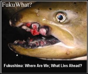 Fuku What?