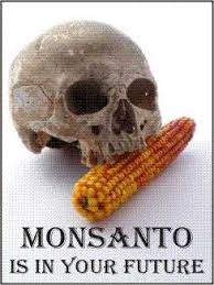 Congress Grants Monsanto Another Free Pass After Decades of PCB Poisoning