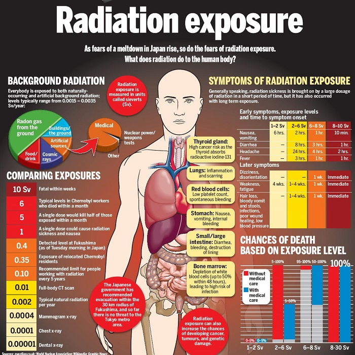 Every Organ is Vulnerable to Nuclear Radiation.  There is No Safe Dose.  Authorities Refuse to Confront Issue While Fukushima Contaminates the Planet