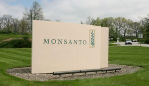 Monsanto In Conflict With Government Of Argentina Over Royalties Collected On Its GMO Seeds