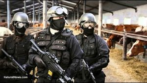 How Growing Lemons Or Raising Bees Could Bring a SWAT team to you door: Massive Overreach by USDA and EPA