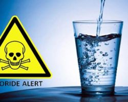 Jason Woodforth from Health Australia party Talks About Fluoride Being A Toxic Poison