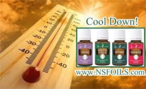 Global Warming Is Heating Up Summertime Temps To Record Highs Yet Again–Here Are Some Essential Oils To Help You Cope
