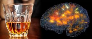 Better Make It A Double: Scientists Isolate Neurons That Tell You To Stop Drinking Alcohol