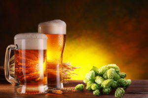 Good News For Beer Drinkers: Hops May Protect Against Liver Disease