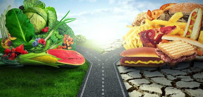 food-highway-split-web-702x336