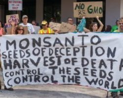 Alarming: Monsanto and Bayer Combined Would Be Selling Nearly A Third Of The World's Seeds