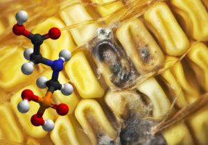 The GMO agenda takes a menacing leap forward