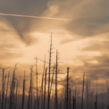 Geoengineering Exposé Mass Press Release To 30,000 Media & Agency Contacts