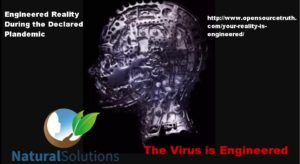 The Virus is Engineered