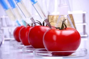 Parallels Between GMO Covid Vaccine and GMO Crops – Lessons Not Learned