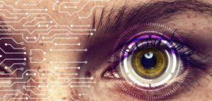 Exploring Biodigital Convergence