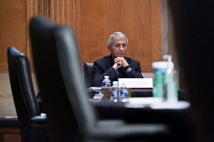 Believe Your Own Eyes About Fauci E-Mails, Not the Fact Checkers